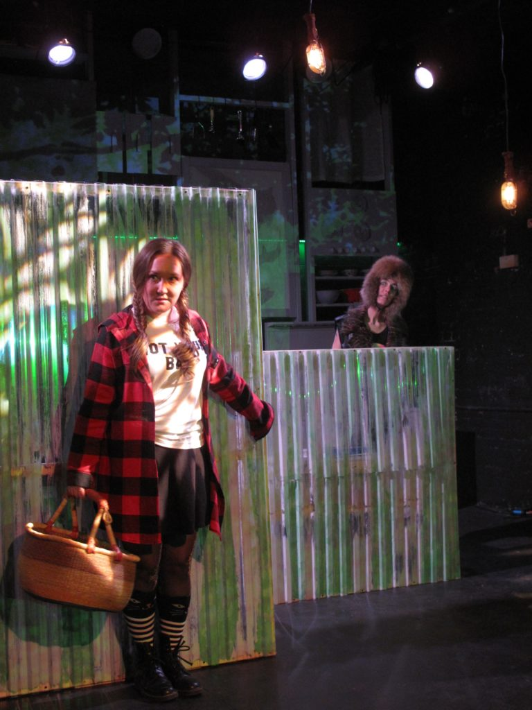 Asheville's theater for family audiences presents THE LITTLE RED RIDING HOOD SHOW starring Julia Cunningham and Tippin